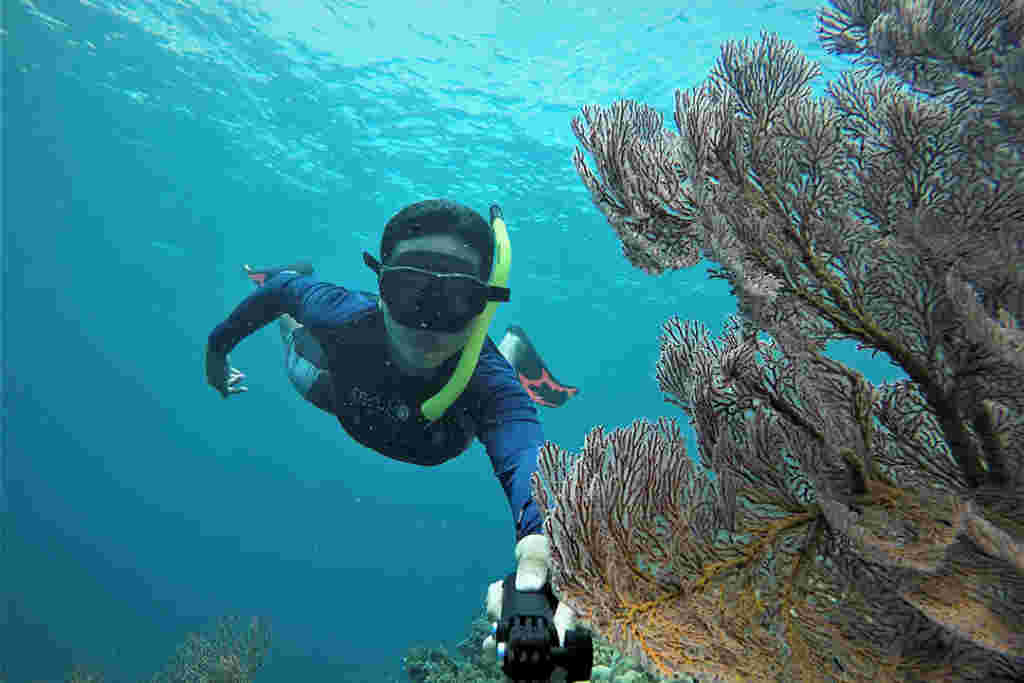 6. More Diving